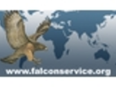 Falcon Service & Security Management